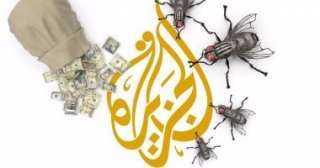 برلمانى يكشف اعتماد قناة الجزيرة الإرهابية على أسلوب الكذب وبث الشائعات