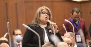 """فيبى فوزى : لجنة إعداد لائحة """"الشيوخ """"انتهت من إقرار 100 مادة"""