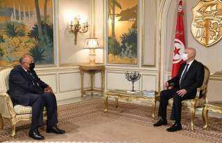 شكري: مصر تدعم القرارات السليمة للرئاسة التونسية