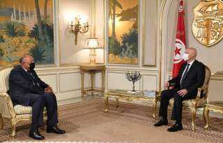 الخارجية: مصر تدعم ارادة الشعب التونسي الحرة