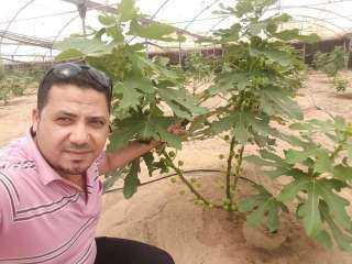 """الخبير الزراعي محمد عيد يعلن تفاصيل مبادرة """"هنزرع مصر""""  للتشجيع على الاستثمار الزراعي"""